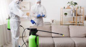 Covid 19 : Le locataire n'a pas d'obligation de désinfection